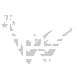 webdesign agentur wd 250 white