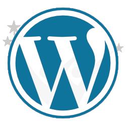 wordpress agentur wd 250
